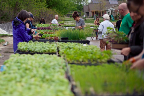 Troy Farm's Plant Sale Returns to Madison on Saturday